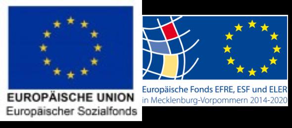 https://technopark.tzw-info.de/wp-content/uploads/2020/11/TSU-EU-Logo.png